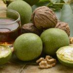 Польза и вред зеленых грецких орехов
