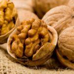 Польза и вред грецкого ореха для организма женщин, мужчин, детей