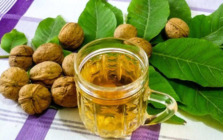 польза и вред листьев грецкого ореха