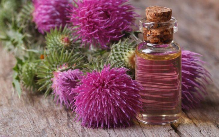польза масла расторопши для организма человека