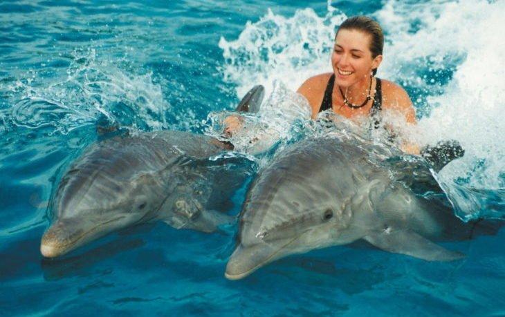 плавание с дельфинами польза и вред