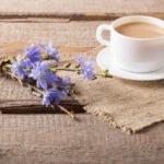 Польза и вред цикория с молоком для организма человека