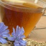 Противопоказания, польза и вред напитков с цикорием