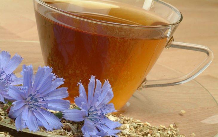 чай из цикория польза
