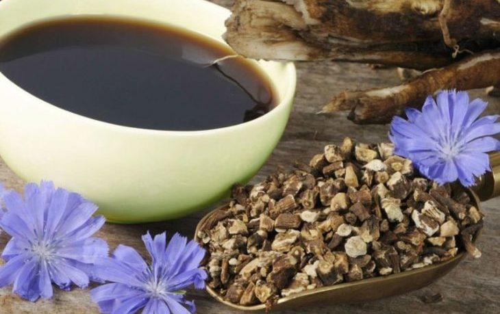 кофе из цикория польза и вред