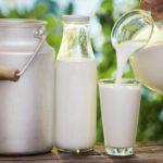 15 самых интересных фактов о молоке и молочных продуктах