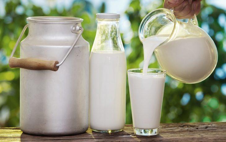 интересные факты о молоке