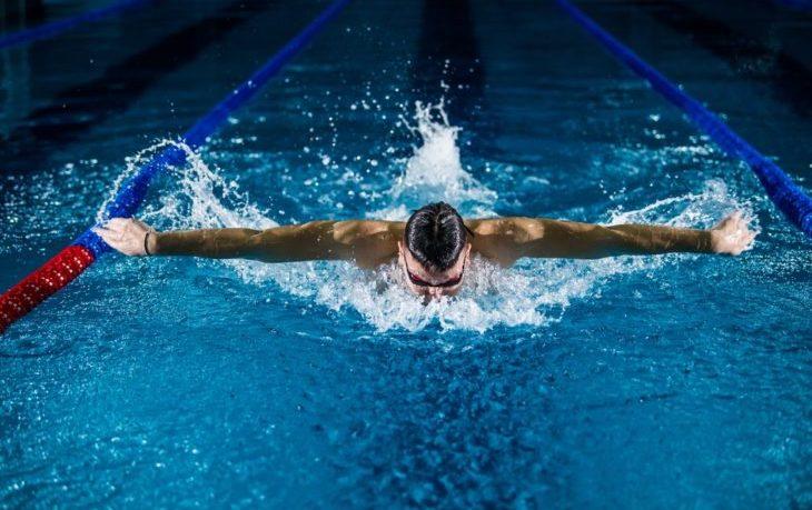 интересные факты о плавании
