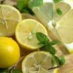 Польза и вред мяты с лимоном в воде, чае, напитке с имбирем