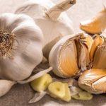 Польза и вред чеснока для почек, костей, суставов