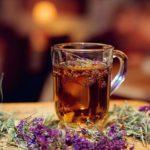 Польза и вред зеленого, черного, травяного чая с чабрецом