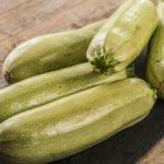 Лечебные свойства, польза и вред кабачка для здоровья человека