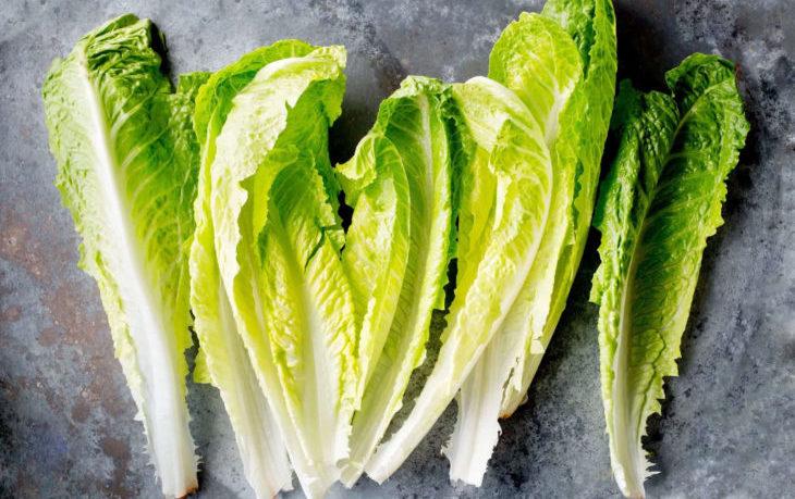 салат латук польза