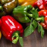 Польза и вред сладкого болгарского перца
