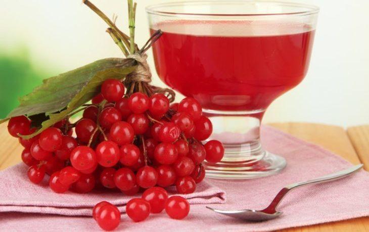 сок калины польза и вред