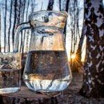 Польза и вред березового сока для здоровья организма человека