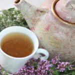 Польза и вред чая, масла, отвара из душицы