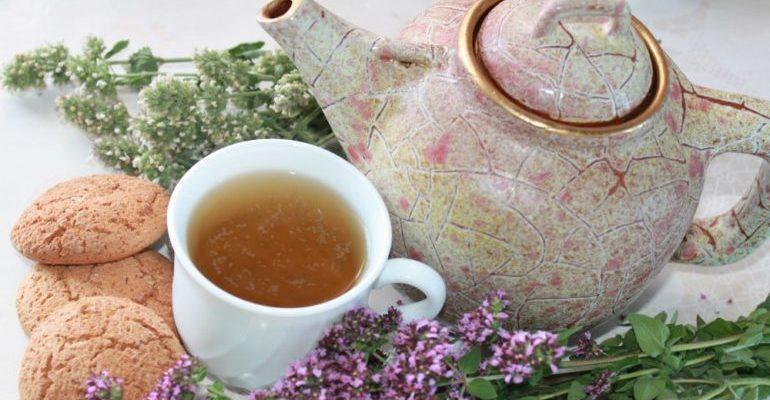чай с душицей польза и вред