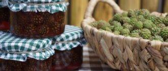 польза и вред варенья из сосновых шишек