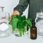 Польза и вред настойки, смузи, масла из крапивы