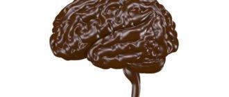 польза и вред шоколада для мозга