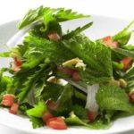 Польза и вред крапивы вареной, в варенье, в салате