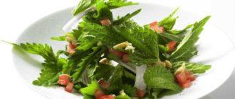 салат из крапивы польза и вред