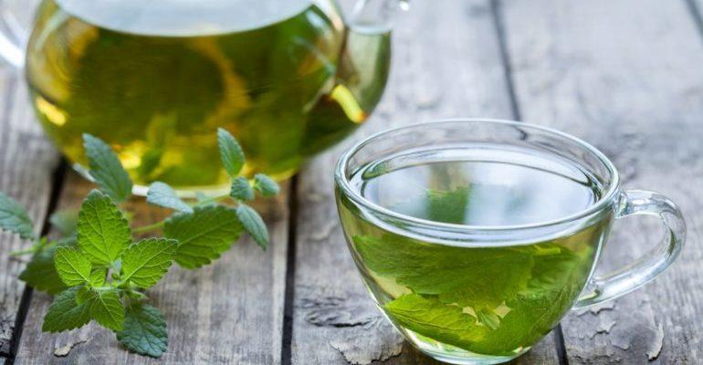 чай с мелиссой польза и вред