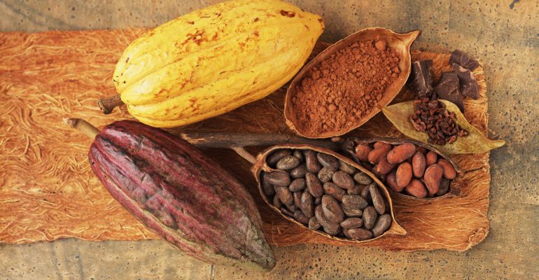 какао бобы польза и вред