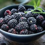 Польза и вред ежевики сушеной, замороженной, садовой, лесной, косточек ягоды