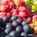 Польза и вред винограда черного, белого, розового, зеленого, синего, красного
