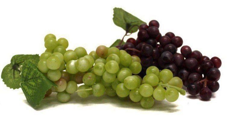 польза винограда кишмиш для организма