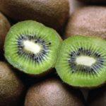 Противопоказания, польза и вред фрукта киви для здоровья организма человека