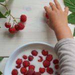Польза и вред малины в варенье, джеме, компоте, с сахаром, молоком