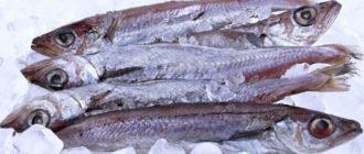 путассу рыба польза и вред
