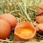 10 продуктов с высоким содержанием витамина Н (биотина)