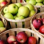 Почему и как я ем яблоки при переедании и тяжести в желудке