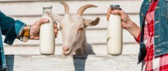 коровье и козье молоко какое полезнее