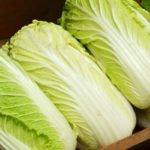 10 полезных свойств пекинской капусты
