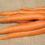 6 причин, почему свежая морковь приносит огромную пользу организму
