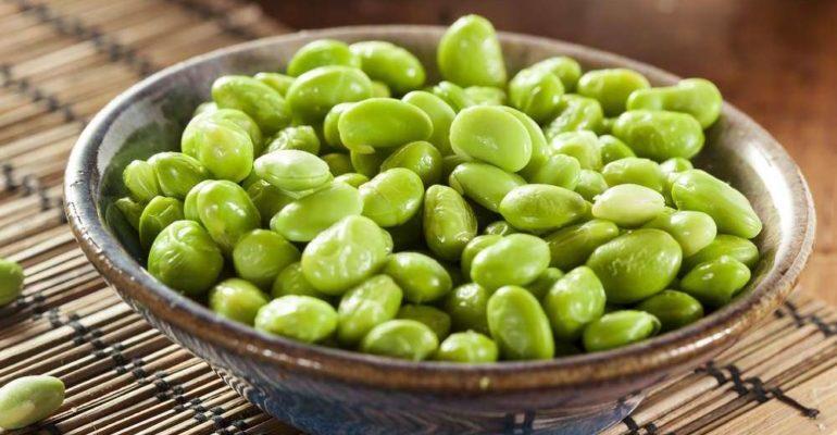 полезные свойства зеленых соевых бобов