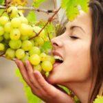 Противопоказания, польза и вред винограда для организма человека